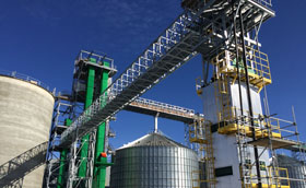 Industrial Engineer Services - Canola Crush Processing Facility